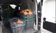 Ekmek fabrikasına B ehliyetli şöför aranıyor