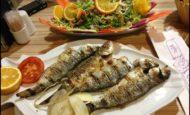 Martı Otel Civarı Restorana Garson Komi Ve Soğuk Meze Ustası